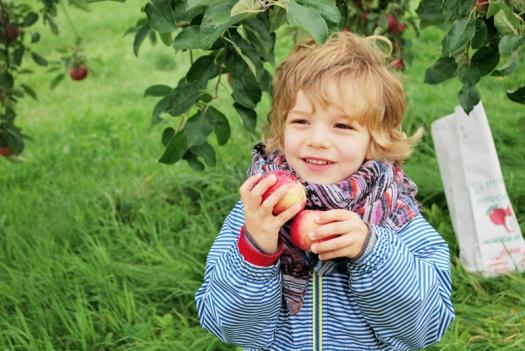Pommes5